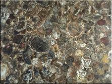 奢华玉石:木化石