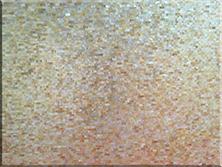 奢华石材:黄珠贝