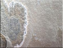 石材背景墙:清水玉