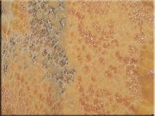玉石背景墙:桔子玉